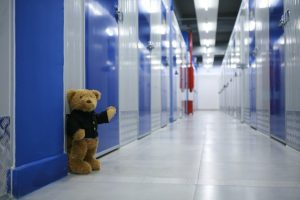Teddy bear, storages